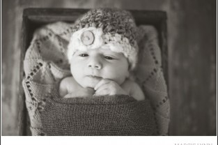 Danville Newborn Photographer